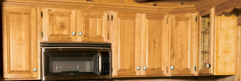 Hickory Cabinet Hinges – Cabinets Matttroy