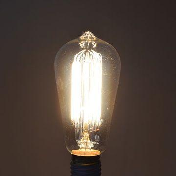 1890 Edison Light Bulb