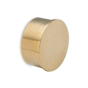 Flush End Cap BRASS 2 INCHES