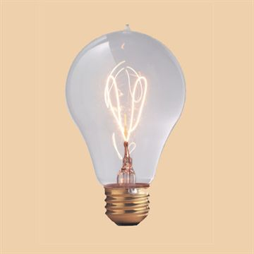1893 Edison Light Bulb