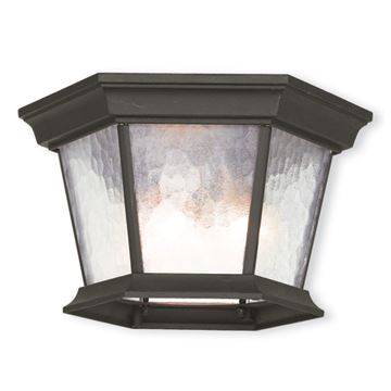 Livex Lighting Hamilton Hexagon Outdoor Ceiling Mount