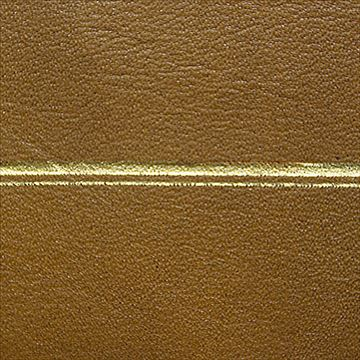 Restorers Antique Desktop Leather - Embossing #11