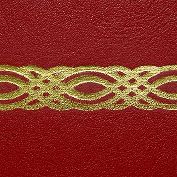 Restorers Antique Desktop Leather - Embossing #21