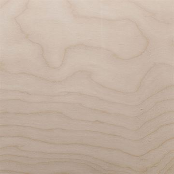Restorers White Birch Flat Cut Veneer