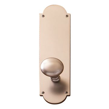 Brass Accents Palladian Interior Door Set - Netropol Knob
