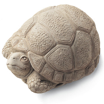 TURTLE TODDLER STONE     *DS*