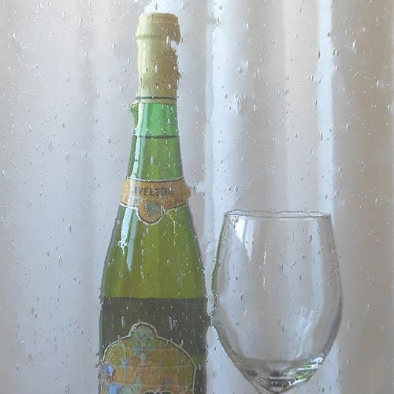 CUSTOM FLAT SEEDED GLASS